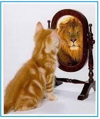 spiegeltje1